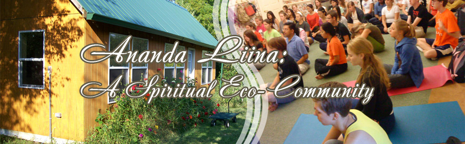 Ananda Liina is a spiritual and ecological community in Urbana, Illinois. Is it is a center of Ananda Marga yoga and meditation, and it features  renewal energy, organic farming, cooperative agriculture, wildlife preservation and progressive social change.